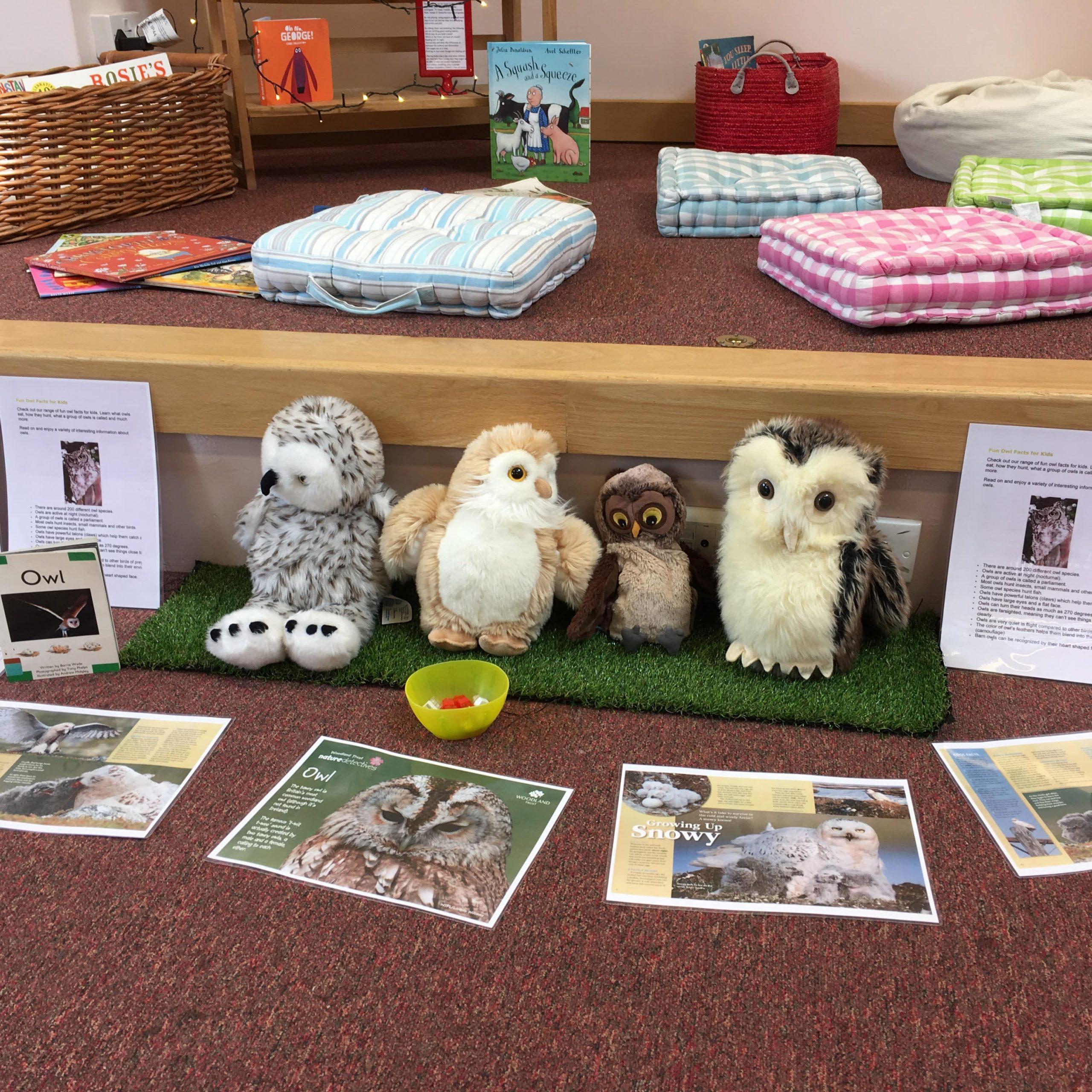 Funics Fun with Phonics Owl Reading Topic Workshops